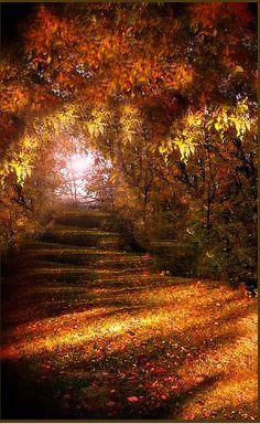 ✯ Autumn Path - Awesome