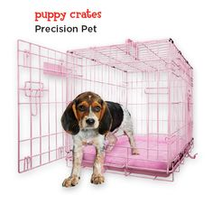 Bring your new puppy home in style with this fashionable dog crate. It's the perfect size for the littlest addition to your family. Available in pink or blue.