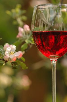 More wine! :)