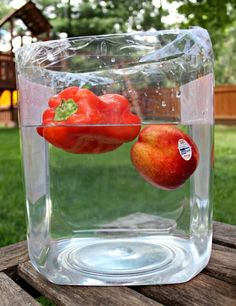 Using fruit & veggies to explore density and buoyancy plus a free printable for your own sink or float experiment! #science