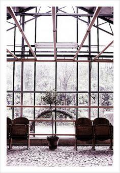 windows.