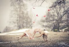 Butterflies in Winterland  © Charlotte