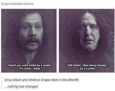 Snape and Sirius