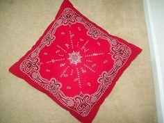 Bandana Pillow : Image 1 of 2