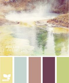 5. Colour theme: yellowy gold, blue, pink, purple, and green - that will fit right in with the location!  #modcloth #wedding