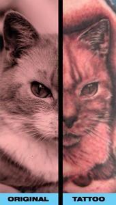 Feature of Kat Von D on TattooDesigns.net