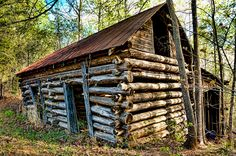 Log Building   Flickr - Photo Sharing!