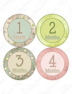 Monthly Onesie Stickers  from Little Baby Bumblebee