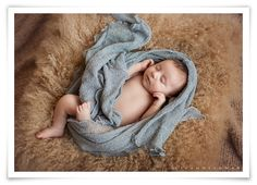 {Las Vegas Newborn Photographer | Kingman Arizona Newborn Photographer}  A Beautiful Family