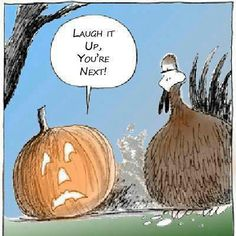laugh, funni, pumpkins, joke, humor, thanksgiving, turkey, happy holidays, happy halloween