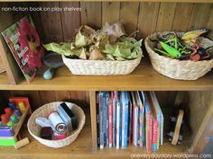 Provocations (Reggio) Non-fiction Books for a Deeper Level of Play
