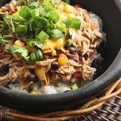 300 Crock pot meals