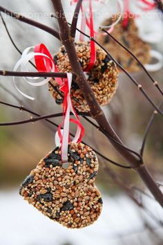 BIRDSEED VALENTINES! Make these easy Valentines for the whole class!