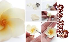 Frangipani Flower TUTORIAL