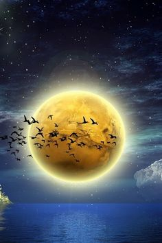 Birds in flight across a giant golden moon .