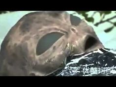 China puts Dead Alien on display