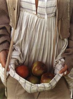 farm, summer picnic, freshly picked, company picnic, orchard