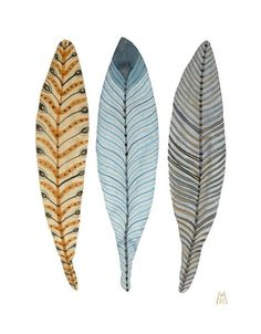 feathers...: Feathery Plumes No. 19 watercolor painting ~ Golly Bard