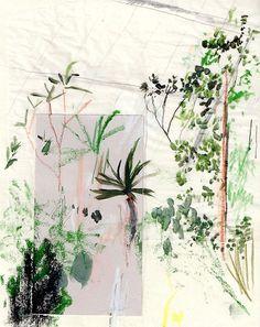 Botanique - Journal Alicia Galer's expressive plant renderings