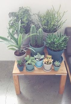 chalkboard pot, pot planter