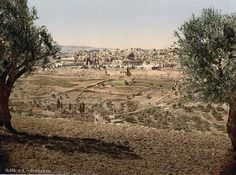 … an imposing photo of From the Mount of Olives. This color photochrome print was made between 1890 and 1900 in Holy Land.
