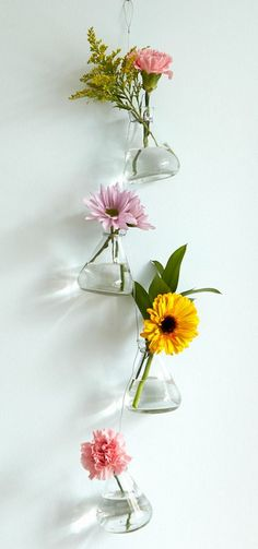 Suspended hanging vases.