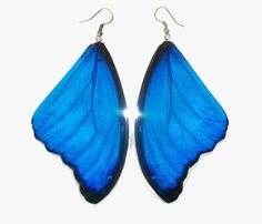 "Free Shipping Worldwide Real Butterfly wing Earrings ""Morpho Didius"" Real Butterfly Earrings. $12.00, via Etsy."