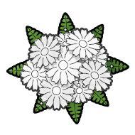 white flowers clip art