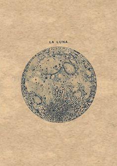 vintage images, drawings, moon illustration, la luna, art, beauti, laluna, print, luna- moon