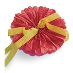 Instructions for making giant tissue paper flowers.