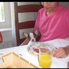 Desde muy pequeñito me enseñaron buenos modales a la mesa.