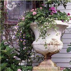 love urns in the yard....