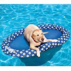 Canine Pool Float