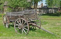 ***** texa histori, texa stori, wagon wheel, countri scene, farm wagon, country scenes, blog, old wagons, sunday nap