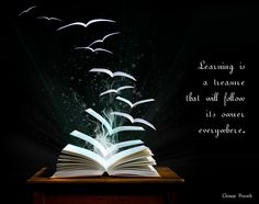 Learning is a treasure that will follow its owner everywhere  - Chinese Proverb  2009 theme