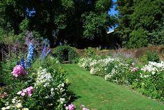 The Intercontinental Gardener: Cruden Farm - a lifelong source of gardening joy