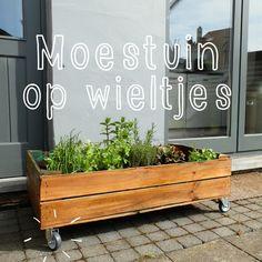 jardin, buiten, frames, de tuin, op wieltj, geweldig ide, citi garden, herbal garden, moestuinkruidentuin op