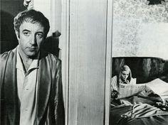 Peter Sellers in Hoffman (1969)