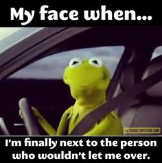 funny frogs f | funny-kermit-frog-car-face.jpg