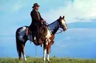 My dream horse.