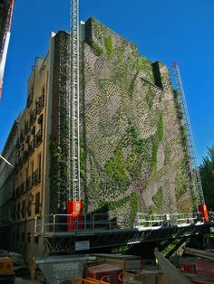 Vertical Garden by Patrick Blanc, Caixa Forum, Madrid - Installation Oct. 2006