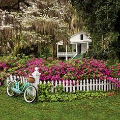 Azaleas, flowering dogwoods and moss hanging from oak trees are iconic signs of the South