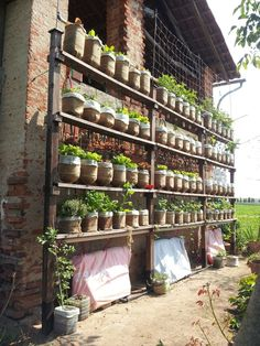 Self watering vertical garden with recycled water bottles #gardening #outdoors #plants #flowers #reuse #upcycle #woodworking