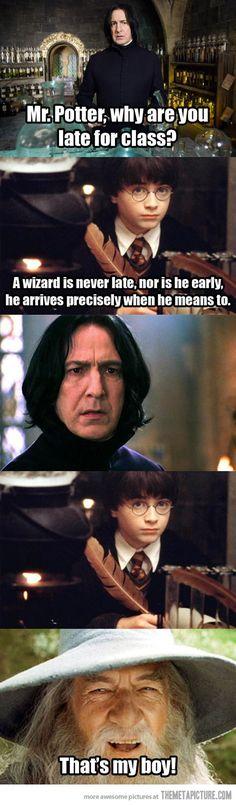 Hahaha! Harry Potter/ LOTR