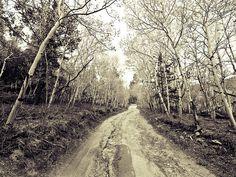Rocky Ridge Road