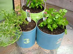 Planters made from old popcorn gift tins