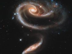 a 'rose' made of galaxies (image credit: NASA, ESA, and the hubble heritage team)