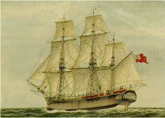 This website created by the 'First Fleet Fellowship', a historical society provides information on the First Fleet. The website covers information on the voyage, the ships of the first fleet, and a list of provisions and Livestock. The website provides basic information in an area lacking good quality content on the internet.