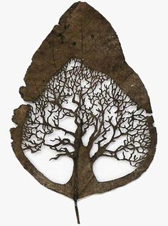 Cut Leaf / Lorenzo Duran art carv, lorenzo duran, negative space, leav, artist, leaf art, tattoo, cut outs, tree of life