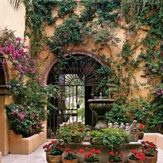 Gorgeous garden with